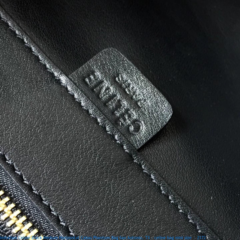843ff9e9ef Imitation Celine Black Medium Horizontal Cabas Phantom Bag San ...
